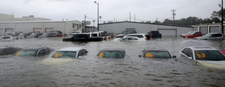 Collecting insurance benefits for a hurricane-damaged car
